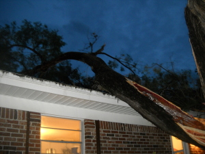 Storm took this one on the house. Tree Split.