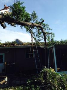 No we didn't drop that tree on the house a storm did. We removed the limbs, dried in the roof and finished the job.